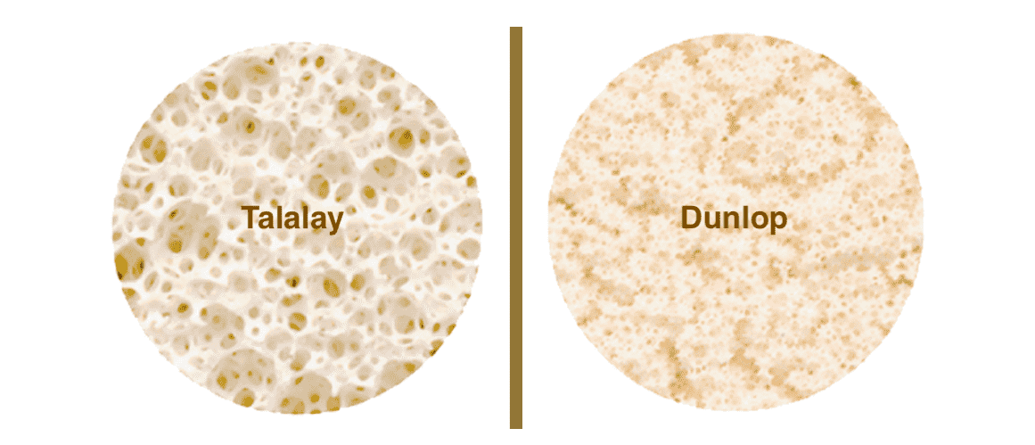 Dunlop Method vs Talalay Method