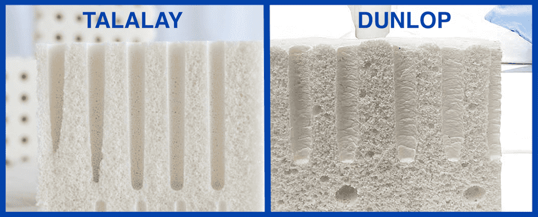 Talalay Latex vs Dunlop Latex